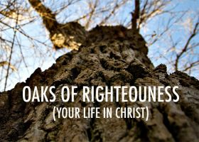 OAKS OF RIGHTEOUSNESS (YOUR LIFE IN CHRIST)