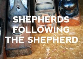 Shepherds following the shepherd