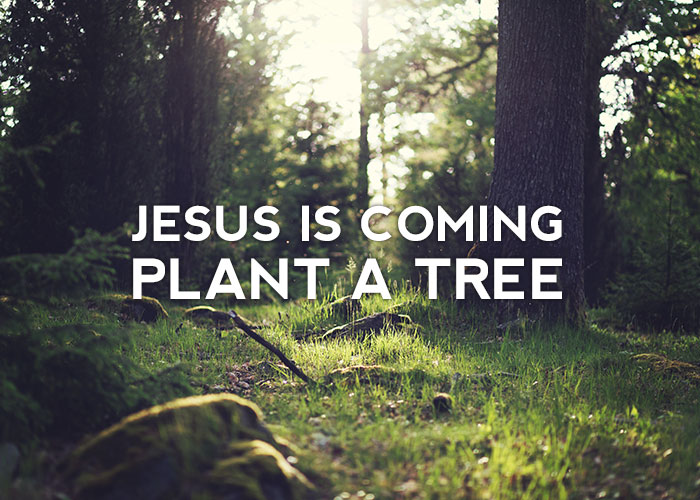 JESUS IS COMING – PLANT A TREE