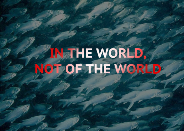 IN THE WORLD, NOT OF THE WORLD